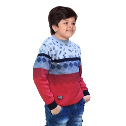 Printed Round Neck Casual Boys Multicolor Sweater