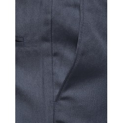 AD & AV Regular Fit Men' GREY Trousers (290)